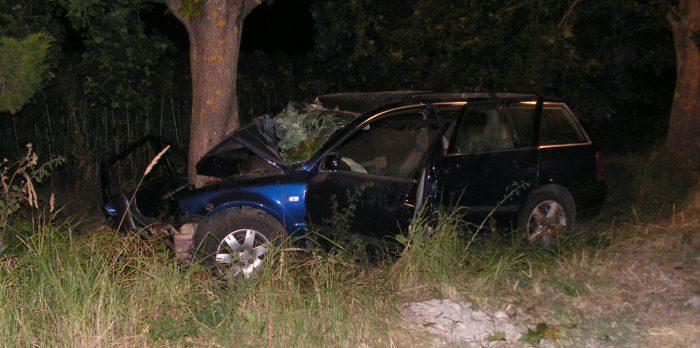 Двама загинаха след зверски сблъсък в дърво