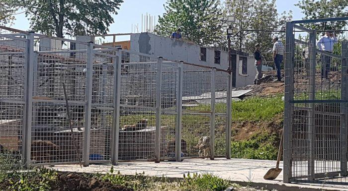 Д-р Валентин Василев провери работата по изграждането  ...