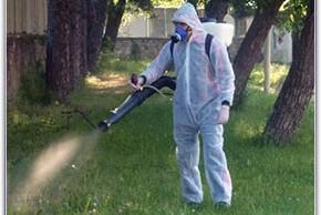 Започва дезакаризацията на тревни площи в Разград