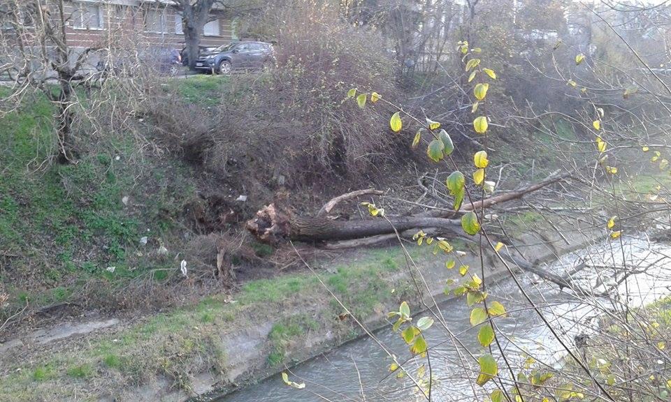 Ураганен вятър причини щети в Разградско