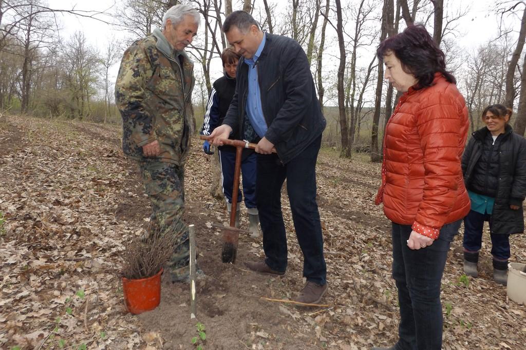 Ръководството на Община Разград се включи в залесител� ...