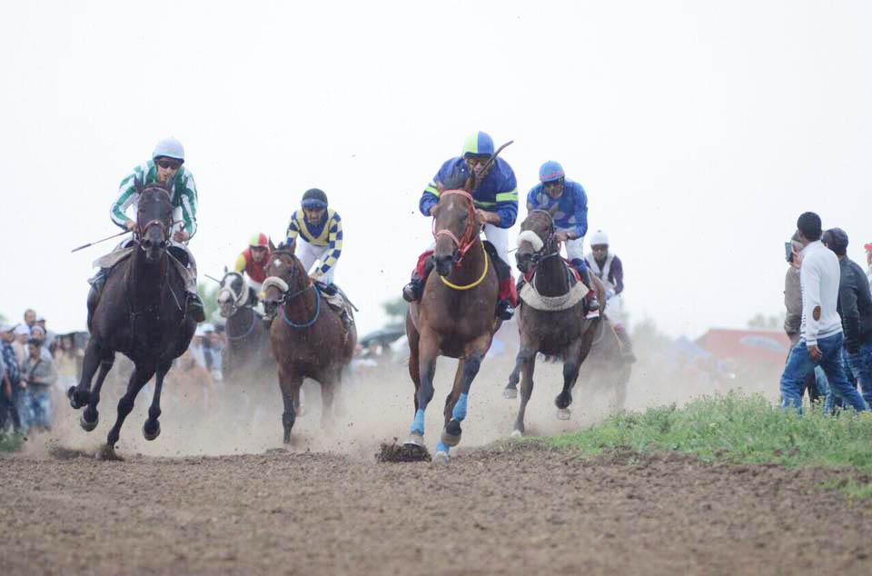 Областният управител бе гост на конните състезания в С ...