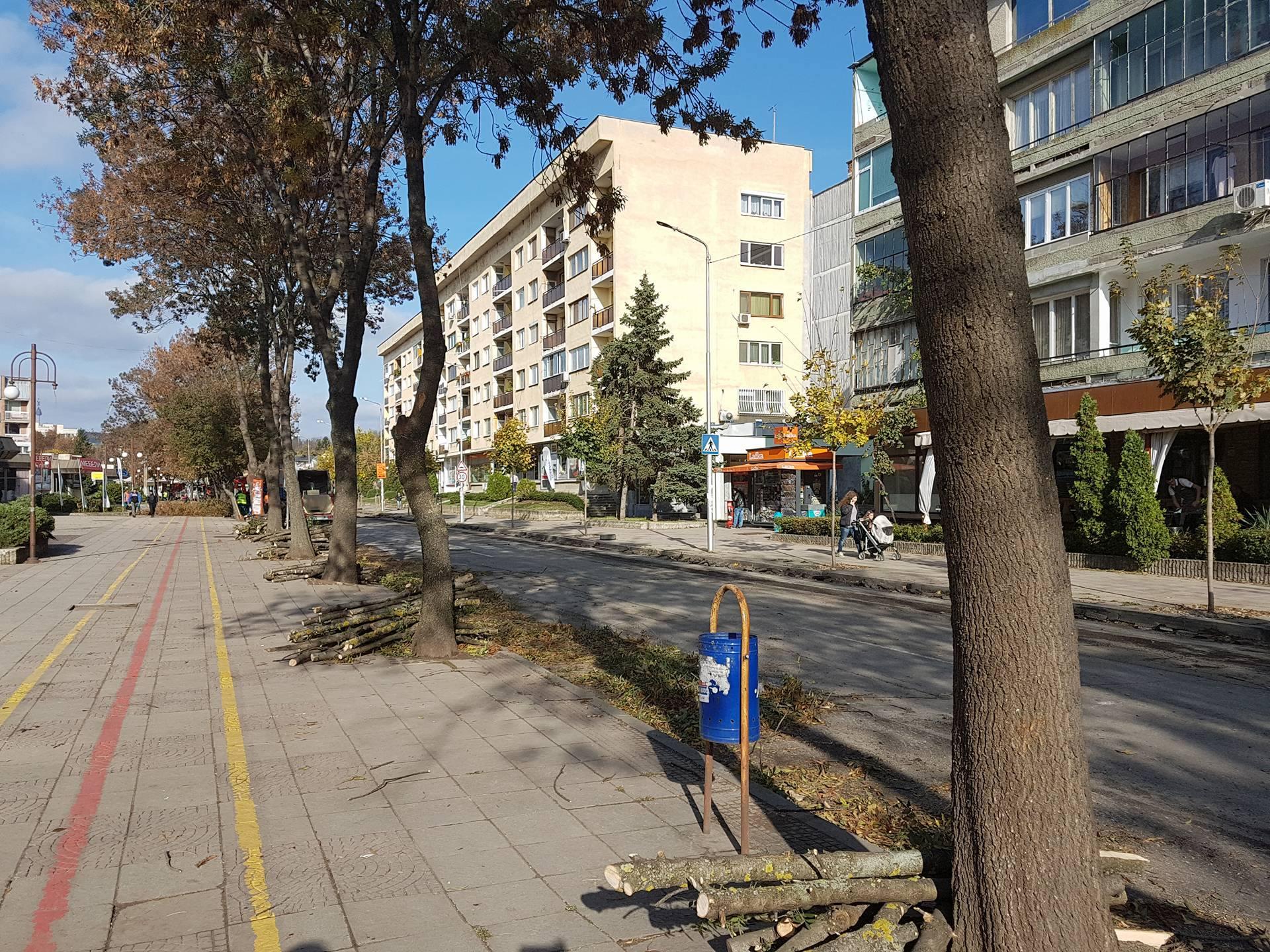 """Започна рехабилитацията на улица """"Васил Левски"""""""