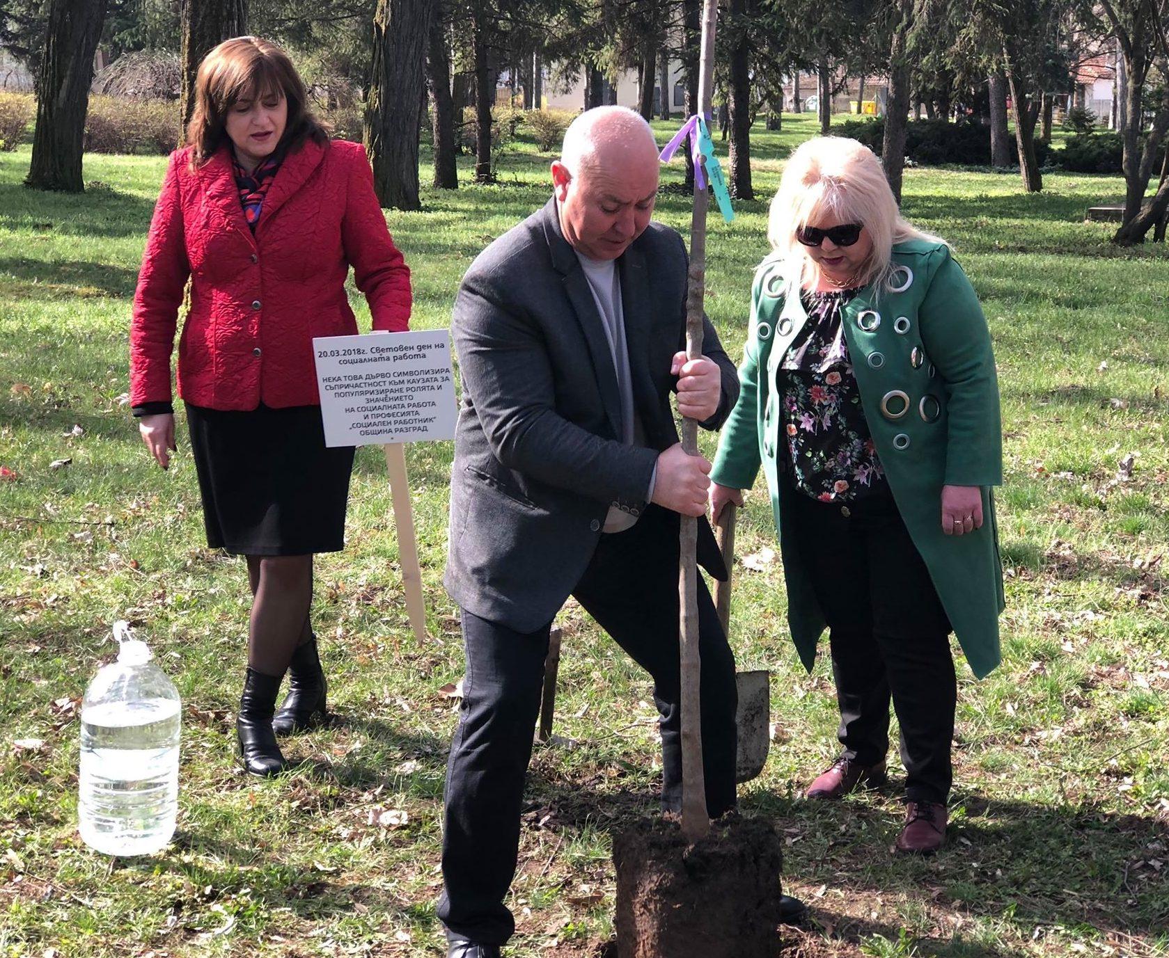 Зам.-кметът Ердинч Хасанов и социални служители засади ...