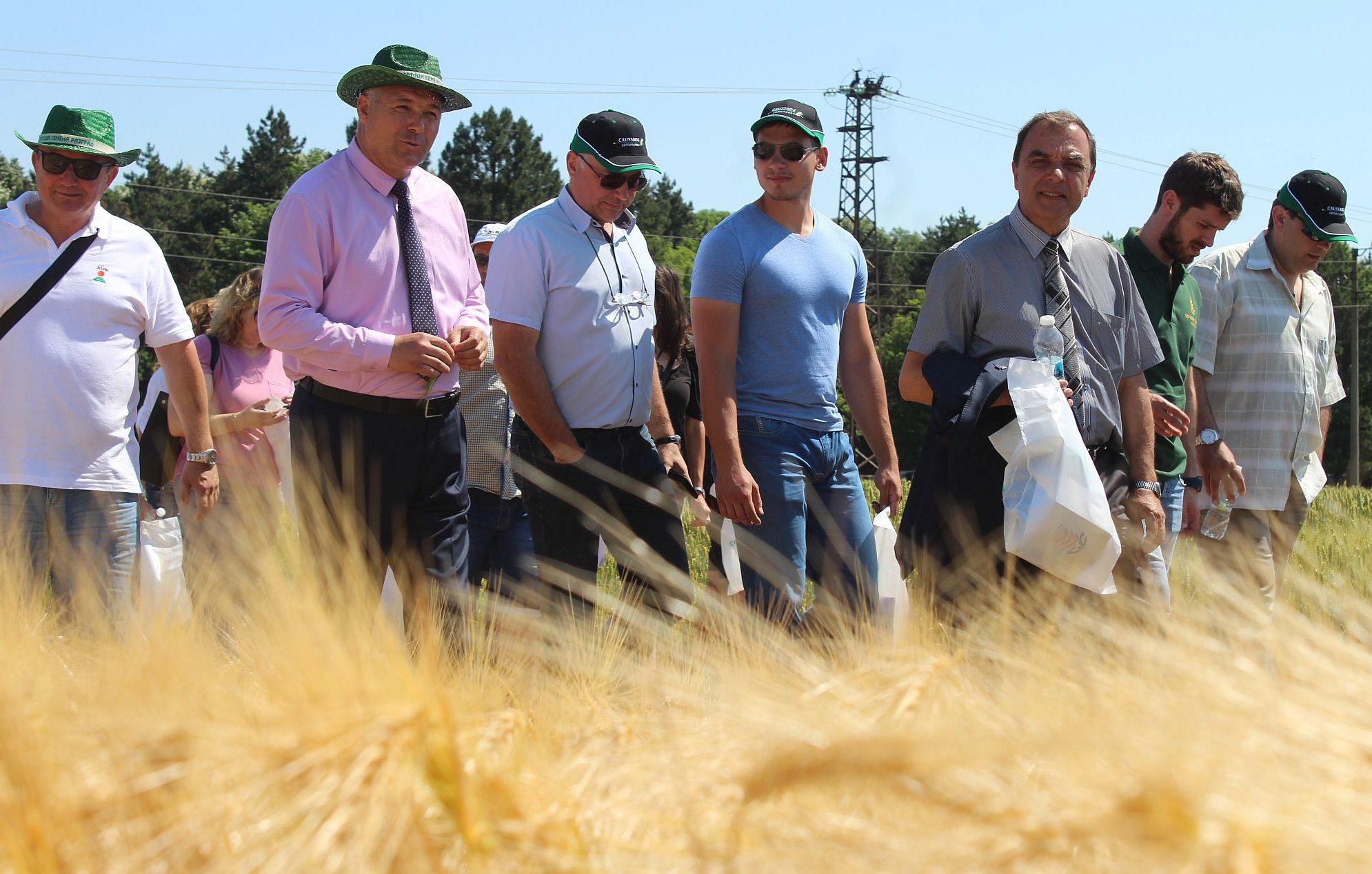 Земеделци от няколко области бяха гости на Деня на пше� ...