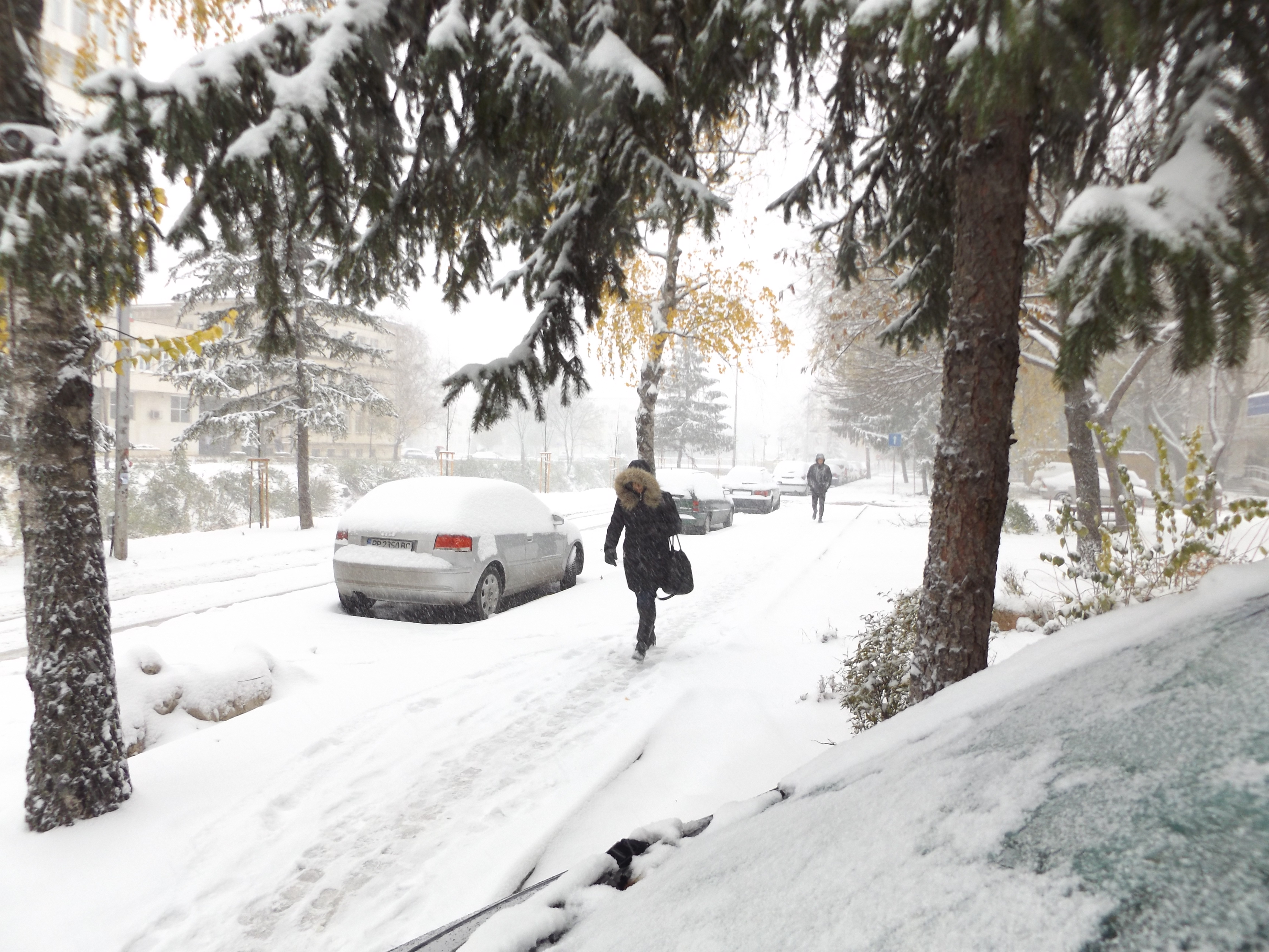 23 машини почистват пътищата в Разградско, няма въведен ...