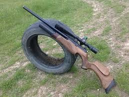 15-годишен простреля с пушката на майка си домашните жи� ...