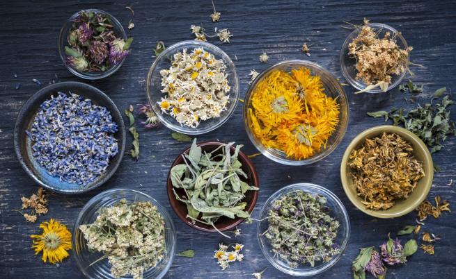Еньовден е – празникът на лечебните билки