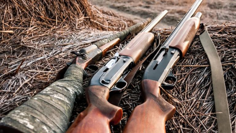 Полицията задържа трима бракониери, убили сърна край С ...