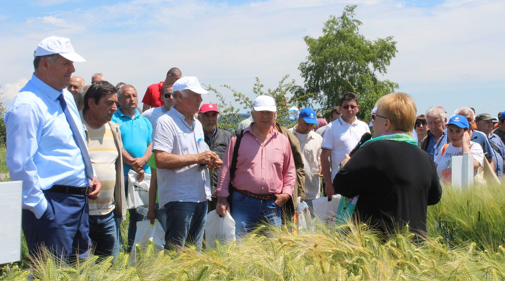 Областният управител бе гост на Ден на пшеницата в Лоз� ...