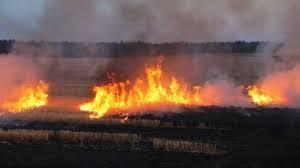 Ремарке със сто бали изгоря в Тертер, сухи треви пламна ...