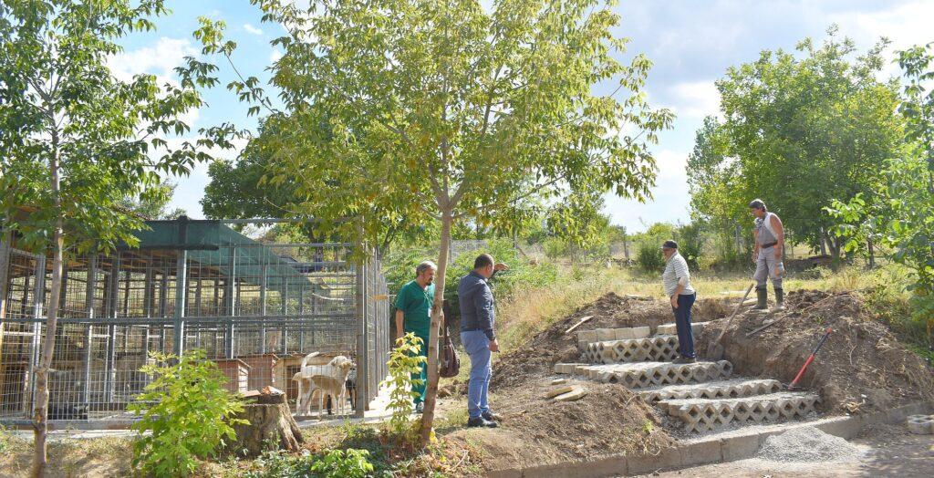 От петък – площадка за разходка на кучетата от Приют ...
