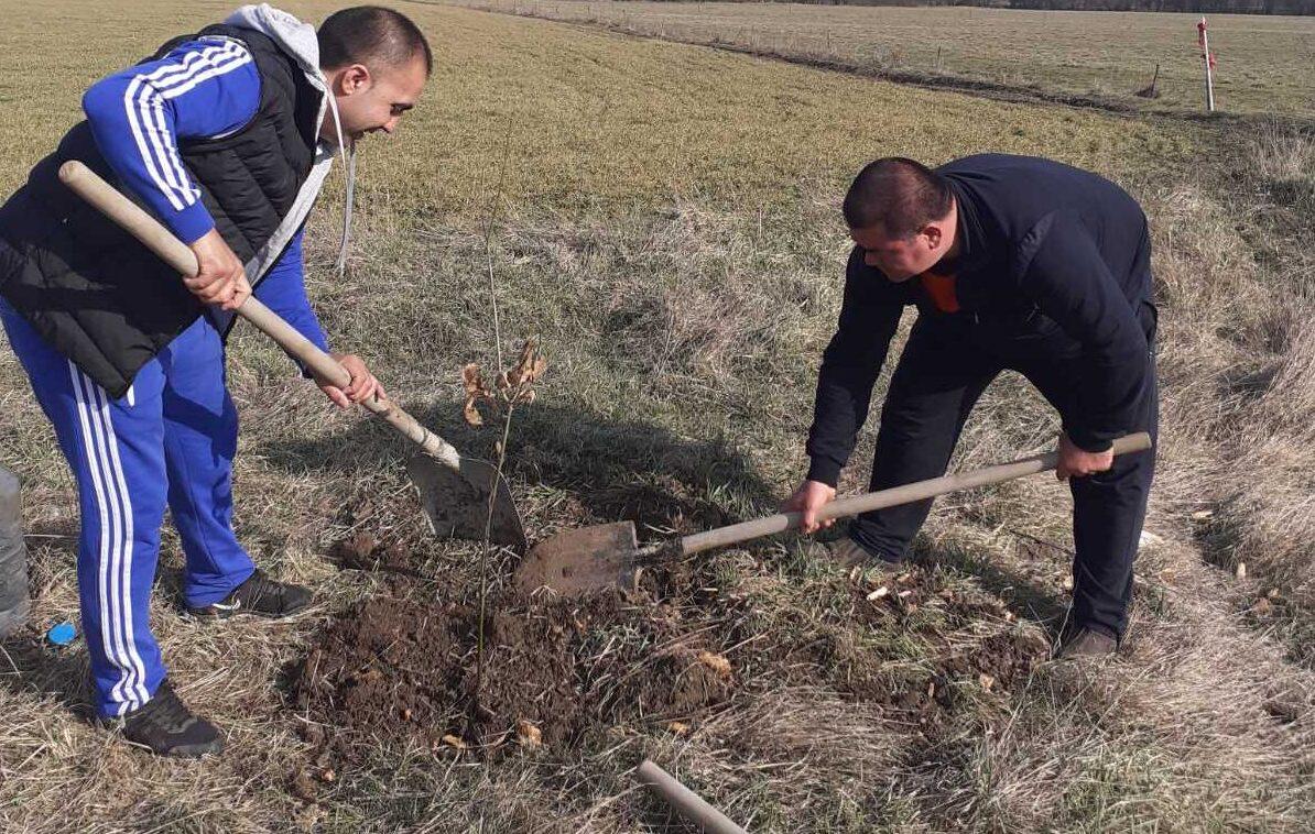 Залесителна доброволческа акция на общинските съветн� ...