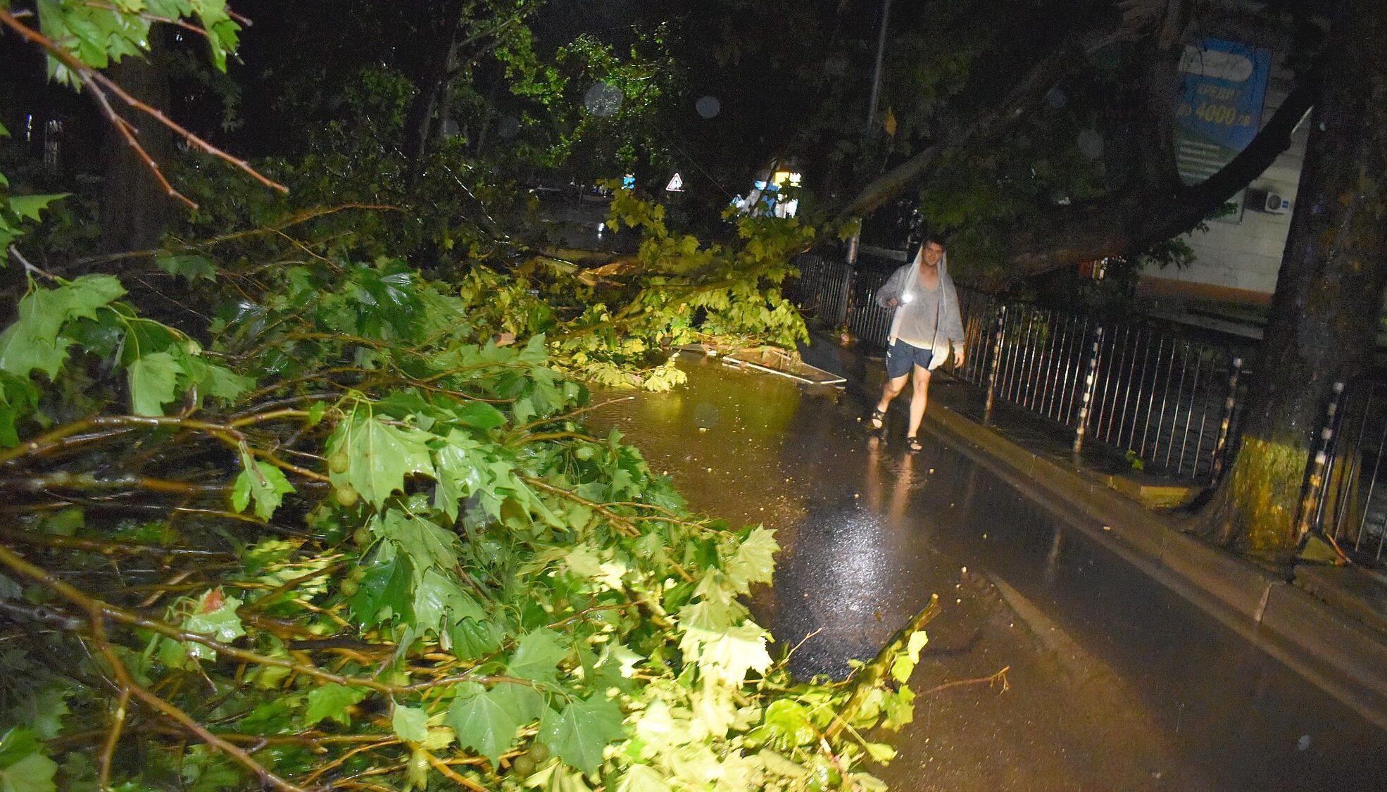 Над 30 сигнала след силната буря са получени в Община Ра ...