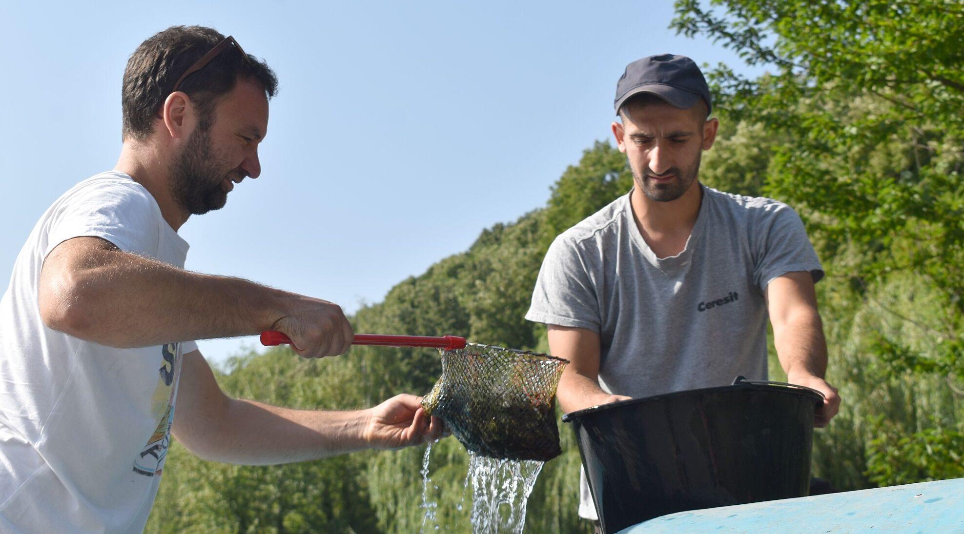 """Още 10 000 рибки плуват от днес в двата язовира на """"Пчели� ..."""