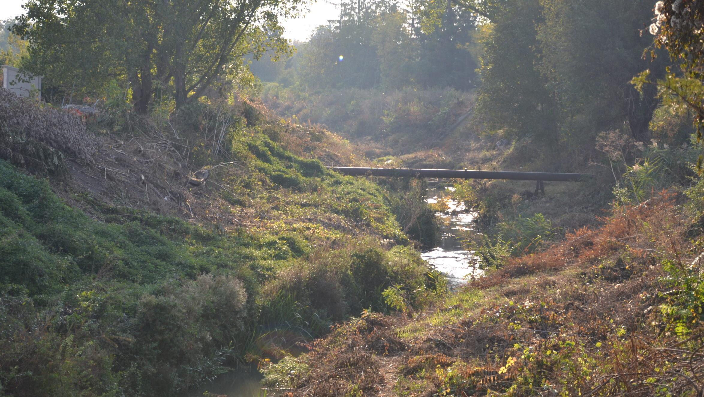 Нерегламентирано заустване в река Бели Лом край Разгр� ...